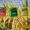 5 Star rice