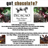IXCACAO Mayan Belizean Chocolate