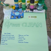 Green Clean Survey
