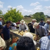 Onion farmers learning how to use the Horticulture innovation