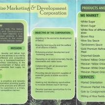 BMDC brochure
