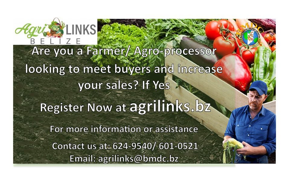 Register as an Agro-producer on Agrilinks Belize